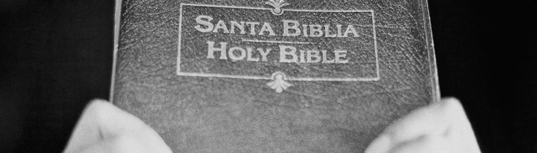 holy bible banner